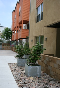 Courtyard view of Lillian Place development in San Diego, California.
