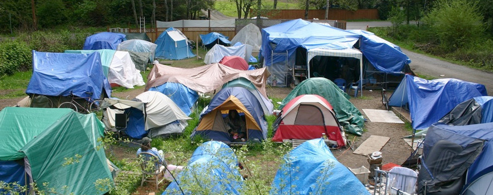 Photograph of approximately 20 tents surrounded by trees and shrubs.