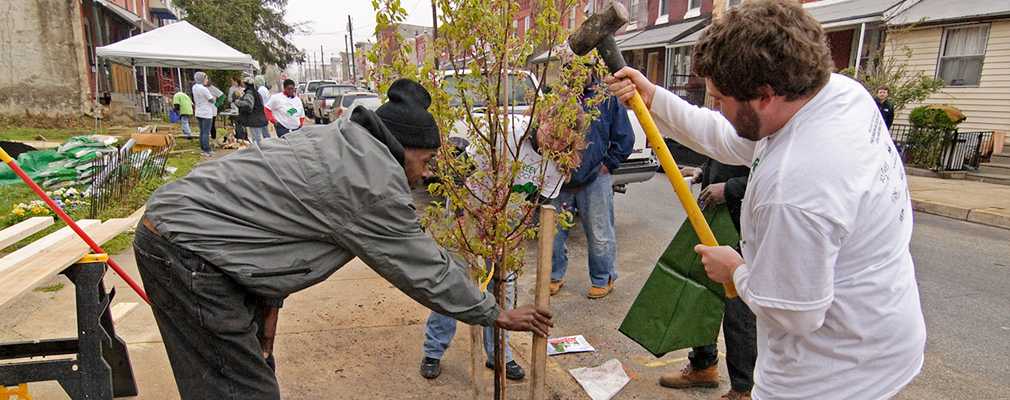 Photograph of a dozen volunteers planting a tree and performing other tasks on the sidewalk of a Philadelphia residential street.