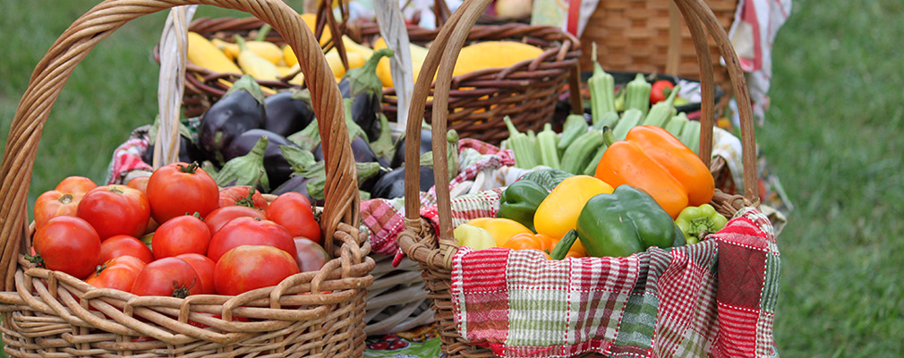 Photograph of six woven baskets holding tomatoes, peppers, eggplant, and zucchini and other produce. The baskets are on a table standing in a lawn.