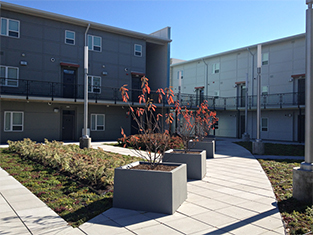 Photograph of the courtyard covering the parking structure at the 16 Park Apartments. Three bushes in box planters are set at the edge of one of the wide walkways. Areas planted with lawn and small bushes separate the walkways. Five sleek lights on poles line the walkways. Behind the walkways, the courtyard is defined by two 3-story facades. An exterior walk connects the two facades at the second story.