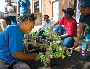 Local Chicago youth beautify East Garfield Park's commercial district with plantings to improve the public space.