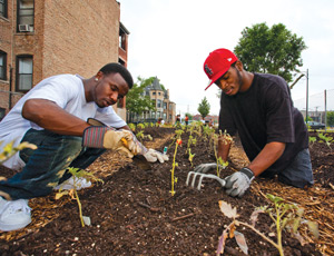 This victory garden in Chicago's Washington Park neighborhood was formerly a vacant lot — an eyesore in the community