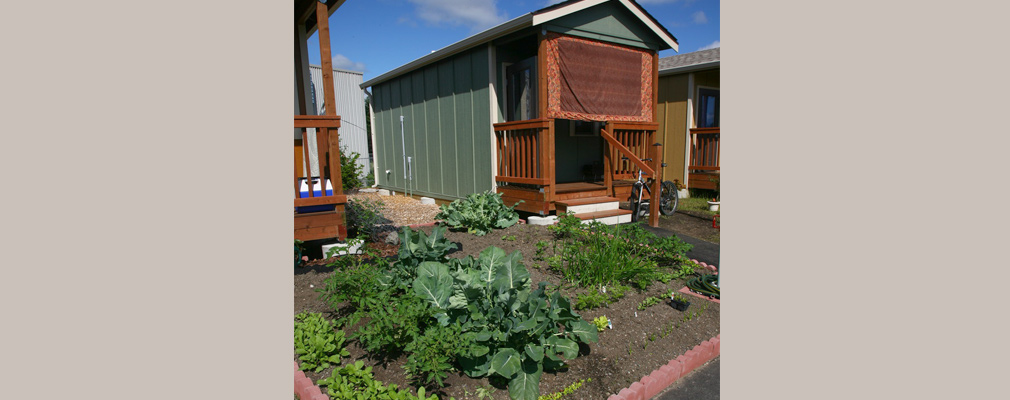 Photograph of a vegetable garden with a one-story cottage with a front porch in the background.