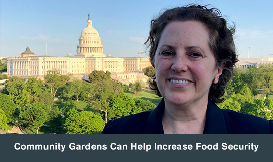 Community Gardens Can Help Increase Food Security