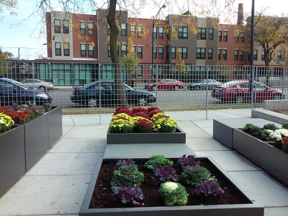 Photograph of a grid of raised garden beds containing flowers and vegetables. A three-story residential building, The Grant at Woodlawn Park, is in the background.
