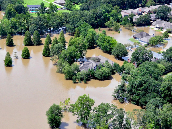 Adapting to Natural Hazard Risk in Louisiana