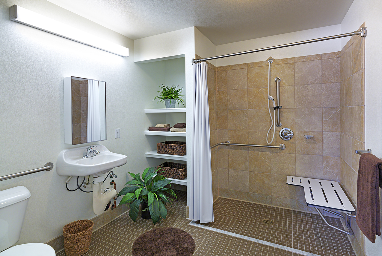 Photograph of a bathroom with a roll-in shower.