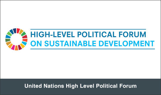 United Nations High Level Political Forum