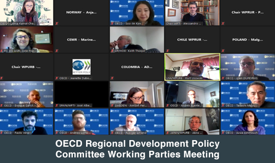 OECD Regional Development Policy Committee Working Parties Meeting