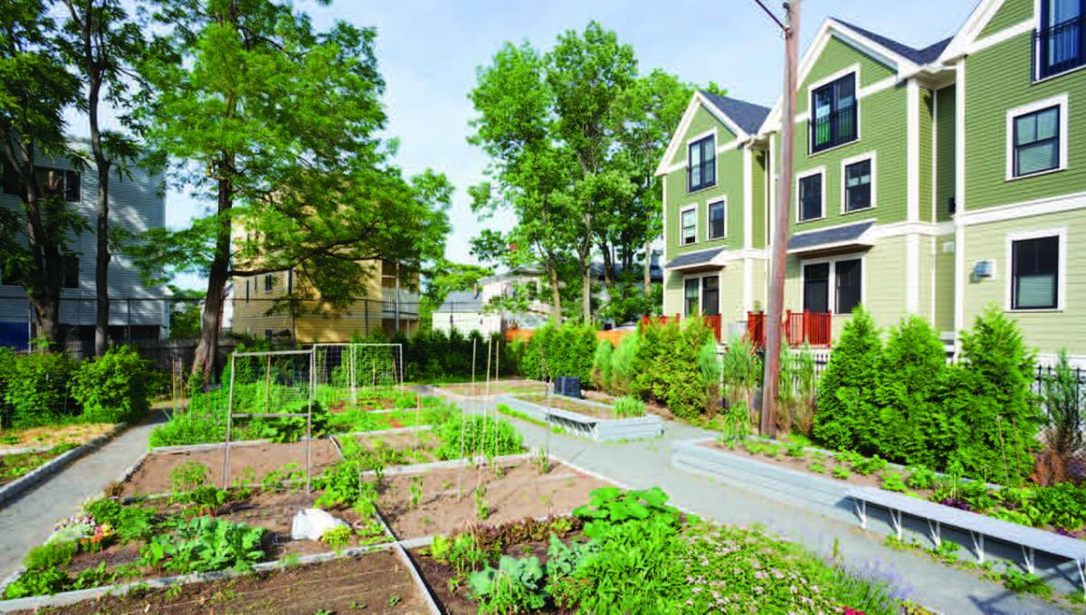 A community garden surrounded by homes.